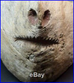 C Art Africain Masque Zoomorphe ancien Bamana Mali 38 cm rare originalité déco