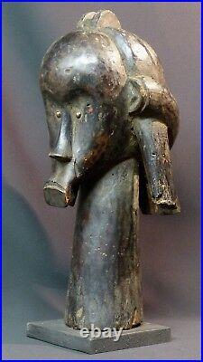 C art africain Buste reliquaire très ancien tribu Fang Gabon 2kg40c sceptre déco